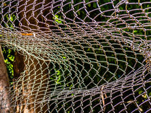 Gebroken draad-netwerk omheining Stock Fotografie