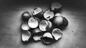Gebroken eieren, detail Stock Foto