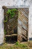 Gebroken en overwoekerde houten deur in concrete muur, Robertsport, Liberia, West-Afrika stock fotografie