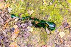 Gebroken fles ter plaatse in forestobject, aard, verontreiniging royalty-vrije stock afbeelding