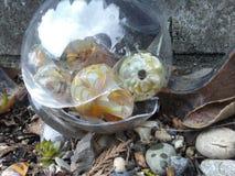 Gebroken geblazen glas Stock Afbeeldingen