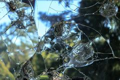 Gebroken glasongeval op de straat royalty-vrije stock fotografie
