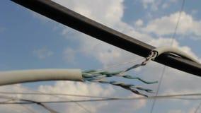 Gebroken Internet-kabel stock videobeelden