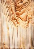 Gebroken net hout Royalty-vrije Stock Fotografie