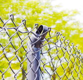 Gebroken omheining Stock Fotografie