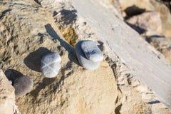 Gebroken zen stenenstapel Royalty-vrije Stock Fotografie