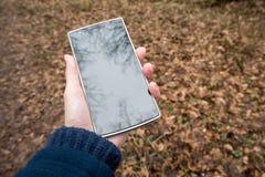 Gebruikend telefoon in openlucht, in het hout Stock Foto's