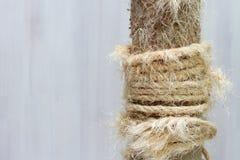 Gebruikte krassende post met gescheurde kabels, oude kattenboom stock foto's