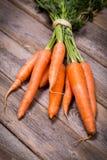 Gebundelde wortelen royalty-vrije stock foto's