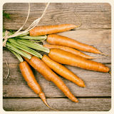 Gebundenes altes Foto der Karotten lizenzfreies stockbild