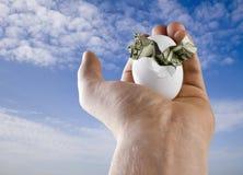 Geburt des Geld-Vogels Stockbild
