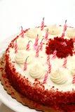 Geburtstag-Kuchen-geblasene heraus Kerzen Stockfotografie