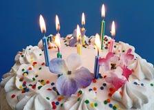 Geburtstag-Kuchen mit Lit-Kerzen Lizenzfreie Stockbilder