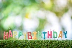 Geburtstagskerzen auf Gras Lizenzfreie Stockbilder