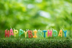 Geburtstagskerzen auf Gras Stockbilder