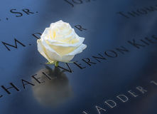 Geburtstagsweißrose nahe Namen des Opfers graviert auf Bronzegeländer von 9/11 Denkmal am World Trade Center - New York, USA Lizenzfreies Stockfoto