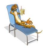 gecko ослабляя Стоковое фото RF