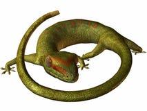gecko διανυσματική απεικόνιση