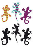 Gecko royalty illustrazione gratis