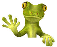 Gecko Royalty Free Stock Image