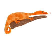 gecko illustration stock