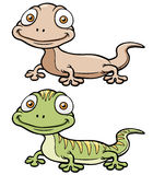 Gecko cartoon Stock Image