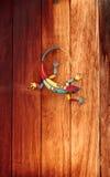 Gecko coloré de bidon photographie stock libre de droits