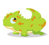 Gecko so cute Stock Image