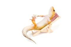 Gecko, der im Strandstuhl sich entspannt stockfoto