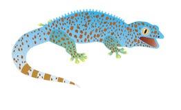 Gecko gekon, djur Arkivbild