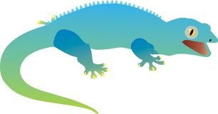 Gecko gekon, djur Arkivbilder