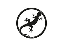 Gecko  illustration Royalty Free Stock Image