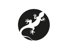 Gecko  illustration Stock Image