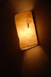 Gecko on Light Royalty Free Stock Photo
