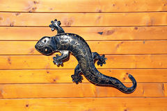 Gecko lizard wall art Royalty Free Stock Photo