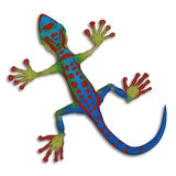 Gecko lizzard Royalty Free Stock Images
