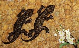 Gecko på väggen royaltyfri bild