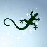 Gecko to crawl Royalty Free Stock Image