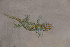 The gecko on wall Royalty Free Stock Image