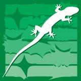 Gecko on wildlife. Illustration royalty free illustration