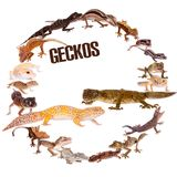 Geckos réglés sur le blanc illustration stock