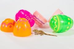 Geco di Pasqua Fotografia Stock