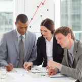 Geconcentreerde bedrijfsmensen die verkooprapport bestuderen