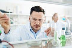 Geconcentreerde Biochemicus Working in Laboratorium royalty-vrije stock fotografie