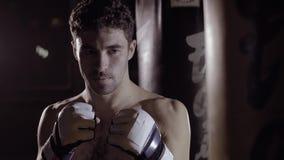 Geconcentreerde bokser die klaar aan doos worden stock footage
