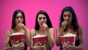 Geconcentreerde dames die aandachtig op film letten en popcorn, pyjamapartij eten stock foto