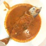 Geconcentreerde kerrie met makreel Stock Foto