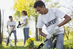 Geconcentreerde mannelijke vrijwilliger die het tuinieren proberen royalty-vrije stock afbeeldingen