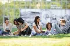Geconcentreerde studenten die in openlucht bestuderen stock foto's
