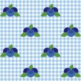 Gecontroleerd patroon met bosbes Royalty-vrije Stock Afbeeldingen